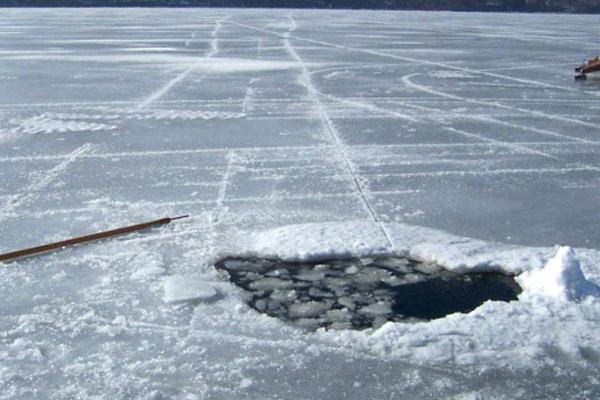 A jég hátán is megél?